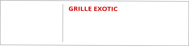 GRILLE EXOTIC